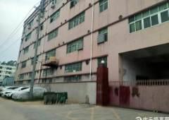 二楼1300平方带装修厂房低价招租