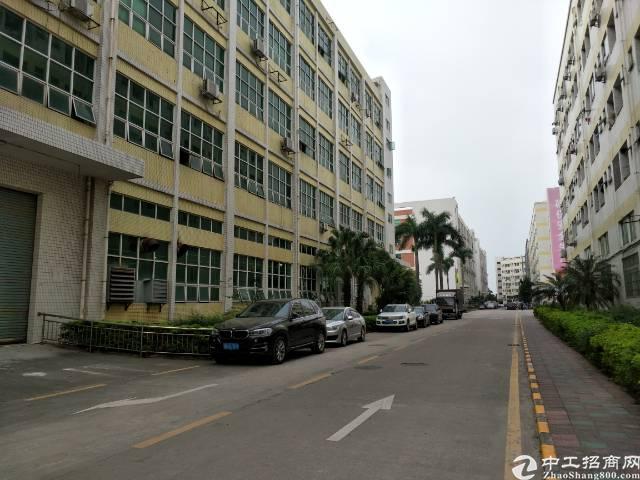 深圳沙井洪田高度出口附近新出装修1000平方厂房出租-图4