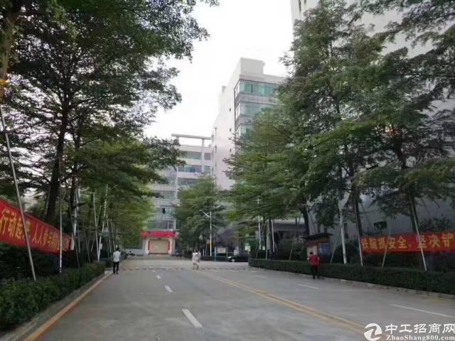 西丽大学城附近有100平米办公商铺招租