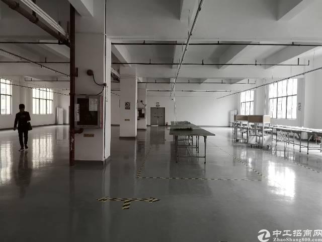 龙华高速出口实业精装修分租600平方办公、电商等客户