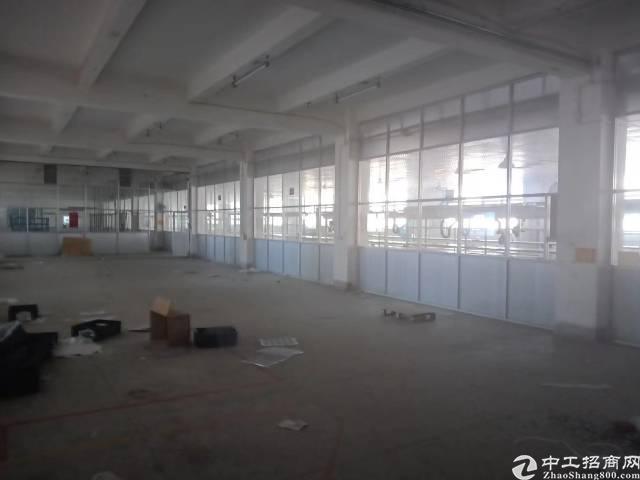 西乡银田红本厂房2600㎡出租-图5
