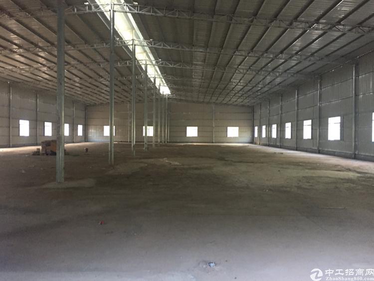 陈江独院钢构厂房出租