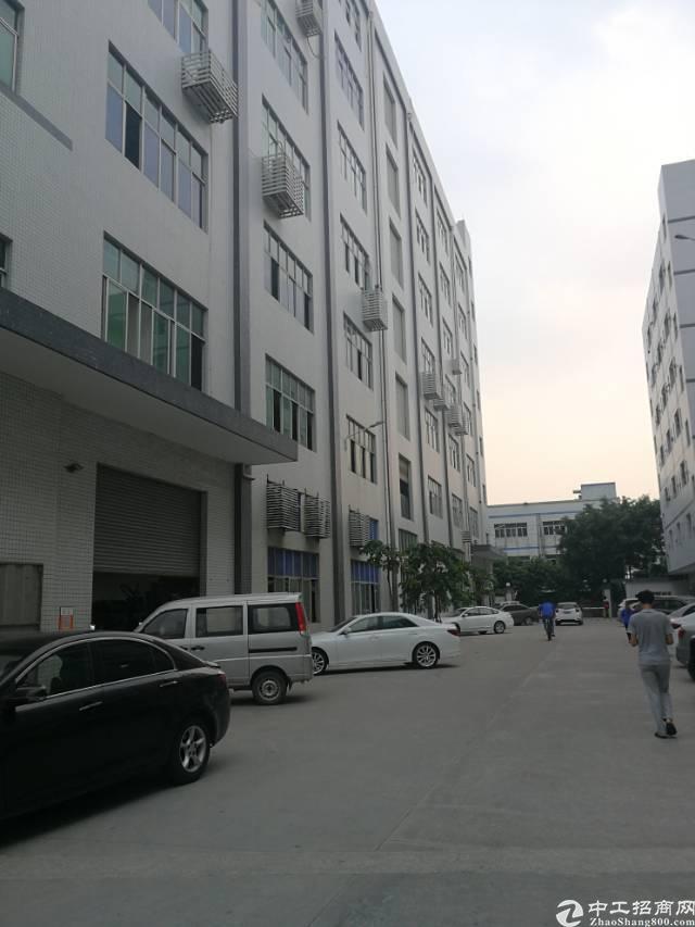 凤岗镇金凤凰新出带办公室、地坪漆标准厂房6楼1700平