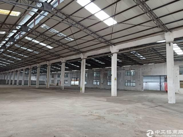 公明下村原房东钢构厂房出租9800平方实际面积分租700起分-图9