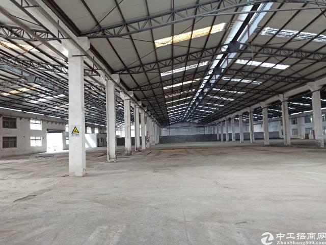 公明下村原房东钢构厂房出租9800平方实际面积分租700起分-图5