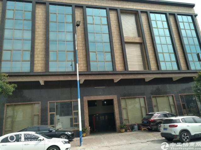 横沥独院写字楼,2-4层