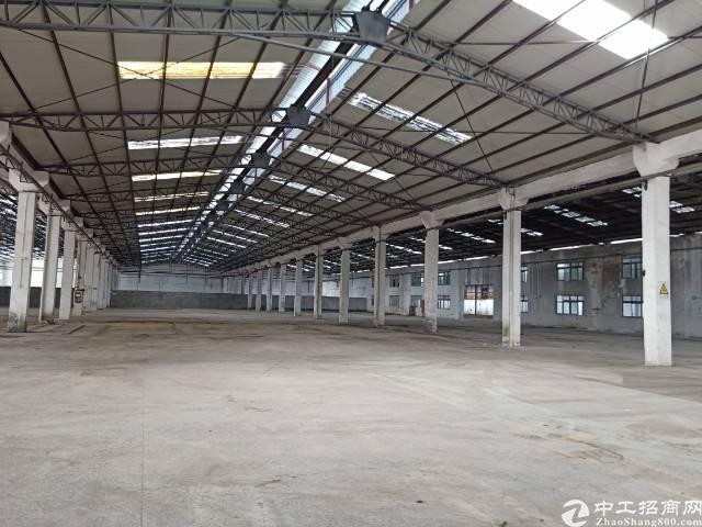 公明下村原房东钢构厂房出租9800平方实际面积分租700起分-图3