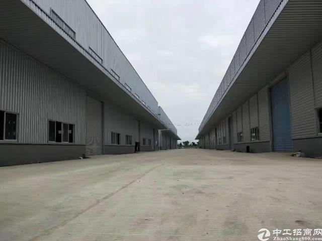 60000平原房东12米高钢构出租,大小分租