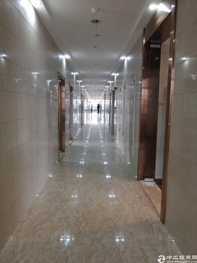 商业红本精装修写字楼办公110平方起租