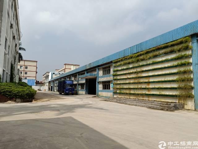 公明下村原房东钢构厂房出租9800平方实际面积分租700起分-图6