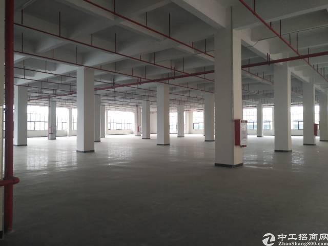 东城全新独院厂房出租-图3