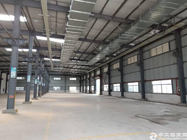 公明下村原房东钢构厂房出租9800平方实际面积分租700起分-图8