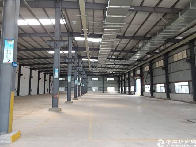 公明下村原房东钢构厂房出租9800平方实际面积分租700起分-图4