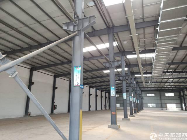 公明下村原房东钢构厂房出租9800平方实际面积分租700起分-图2
