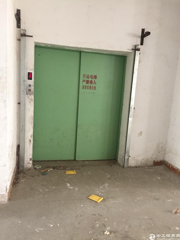 凤岗镇原房东厂房950平零公摊