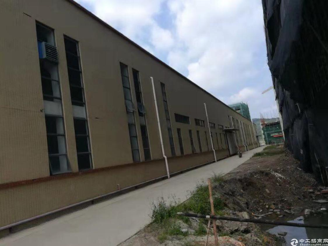 惠州市博罗县新出原房东独院6000平高度12米