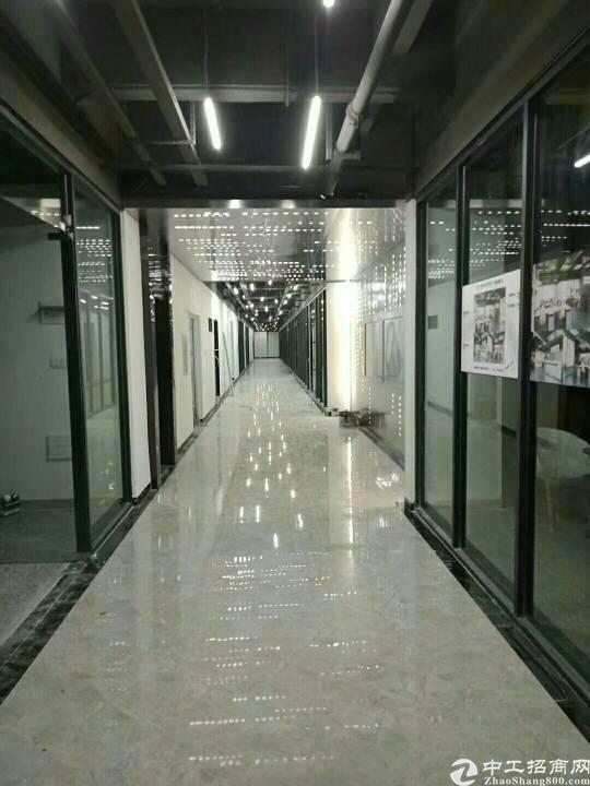 政府扶持项目,精装写字楼,临街商铺,位于新塘商业与住宅中心