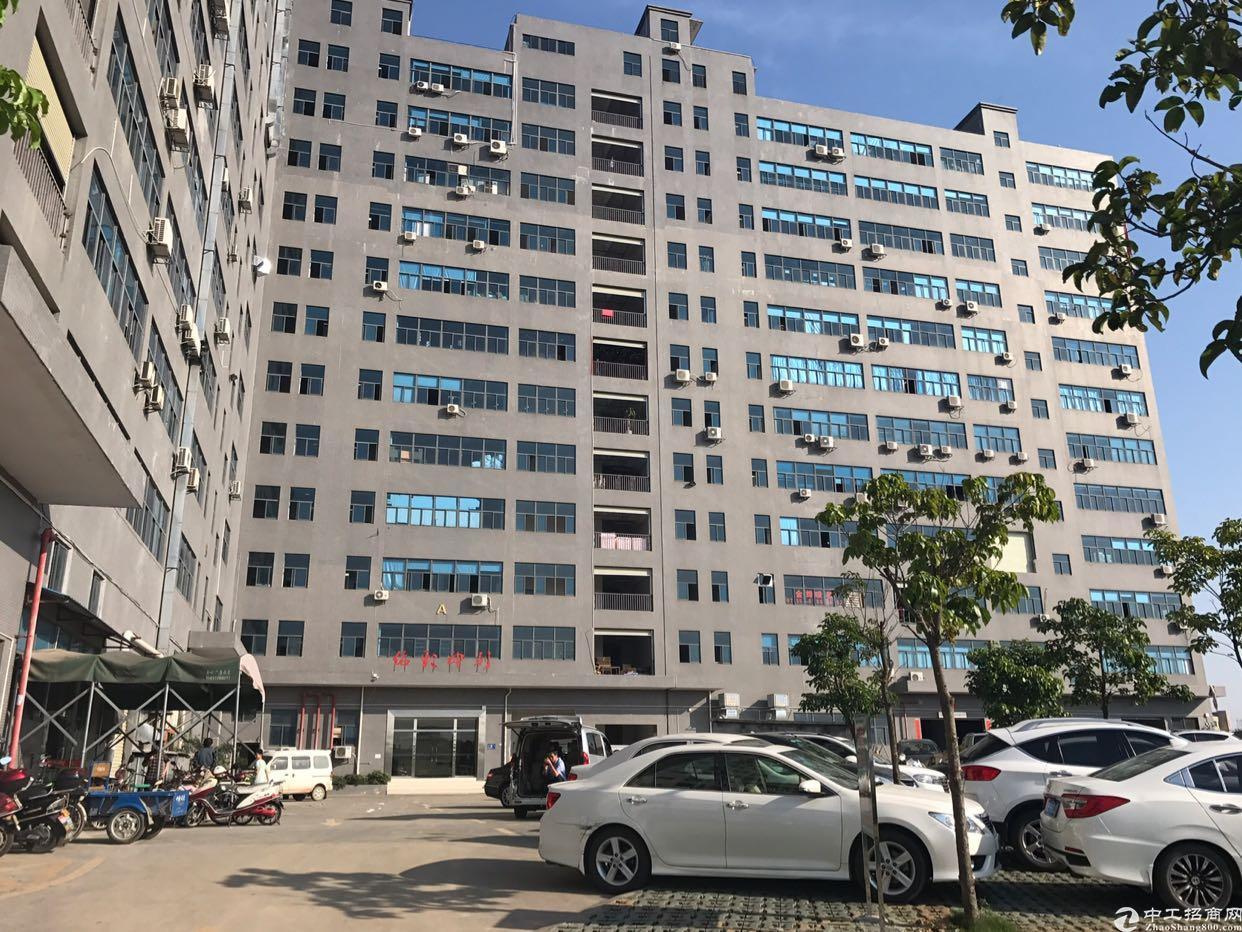 塘明高速出口楼上800平方楼上带装修厂房出租