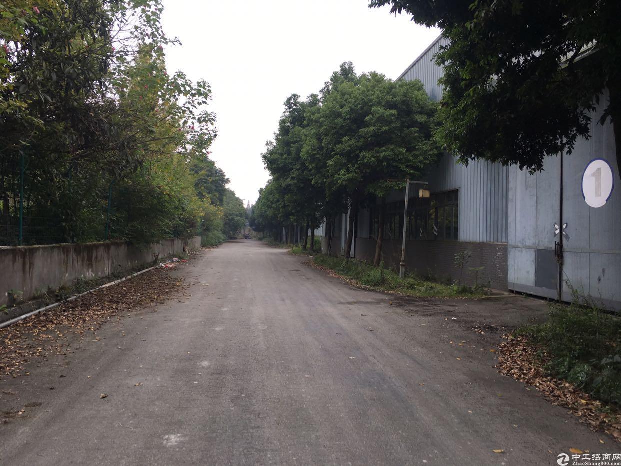 温江区海峡科技园900平厂房出租-图5