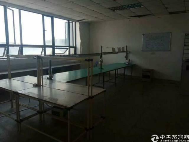 西乡鹤洲洲石路边300㎡带装修厂房出租(拎包生产)-图2