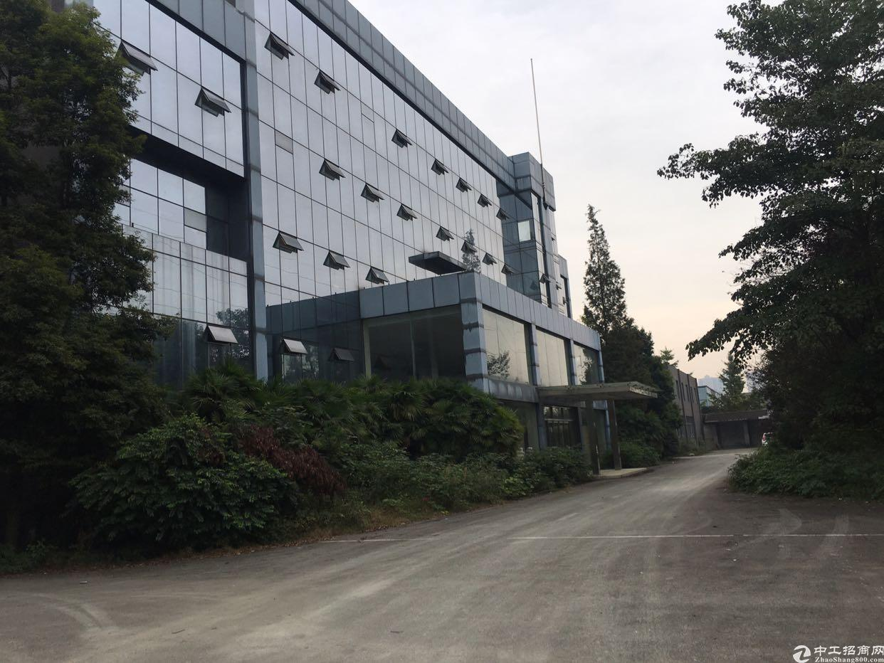 温江区海峡科技园900平厂房出租-图4
