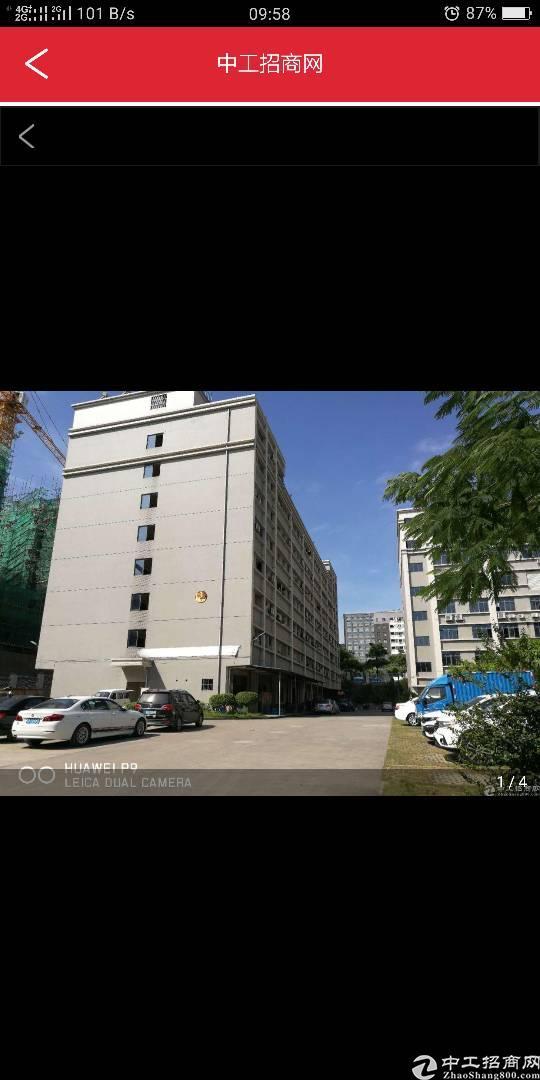 布吉李朗新出450平厂房,精装修,隔好小办公室,卸货平台