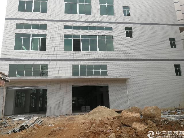 凤岗镇金凤凰新出带消防喷淋、8米高全新标准厂房一楼3000平