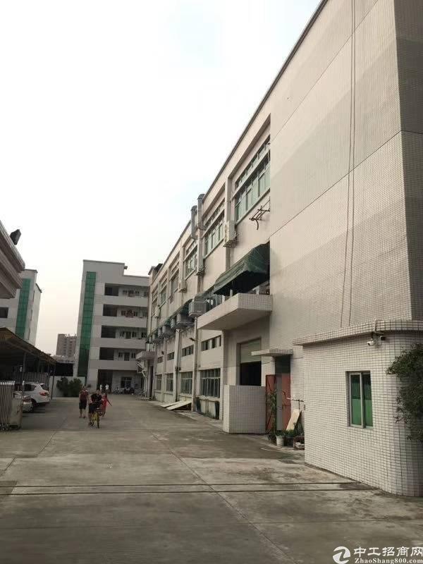 石排镇独院厂房三层面积7530方,宿舍五层2500方
