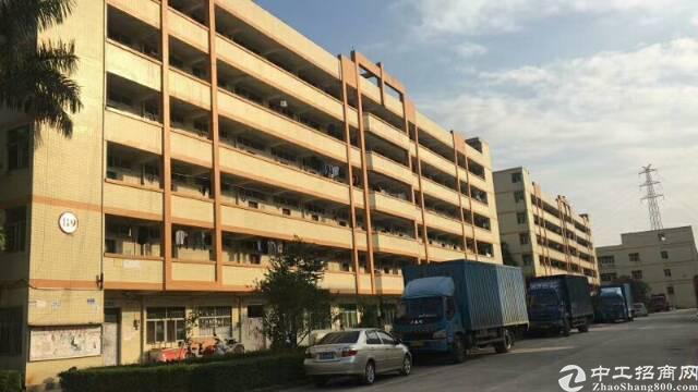 福永新出二栋宿舍11000可改公寓