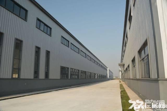 湖北省京山市工业园区9.6米层高行吊厂房出租