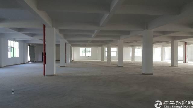 新出原房东独院厂房21300平方-图4