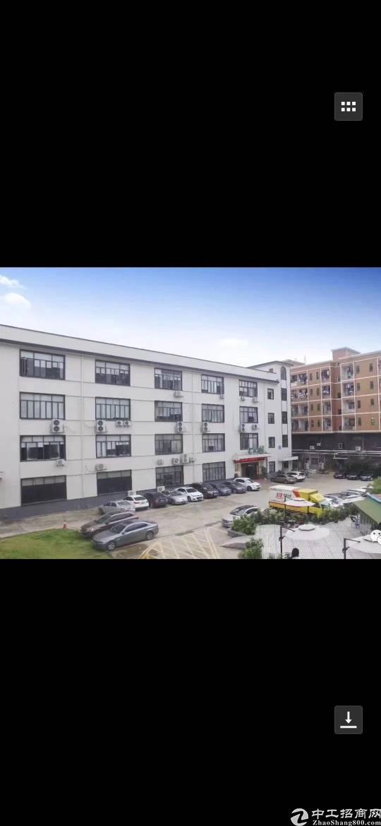 东莞塘厦国有双证经典独院小面积厂房诚意出售