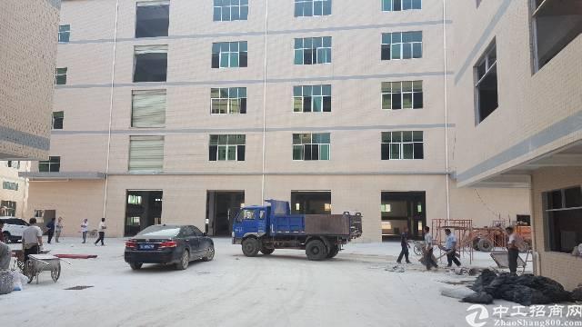 新出原房东独院厂房21300平方-图6