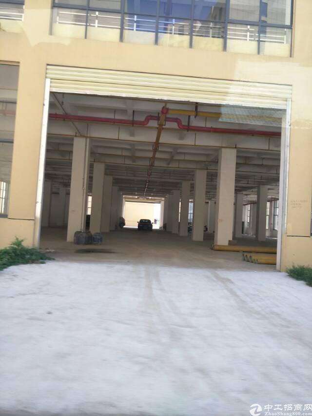东西湖食品园3000平4层独栋,高4.5米可分租,配套宿舍食