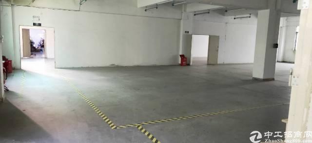 大浪商业中心,原房东独栋1000平厂房招租
