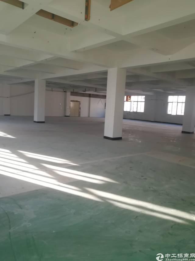 深圳龙华新区工业路新出标准厂房二楼700平,20块可分租