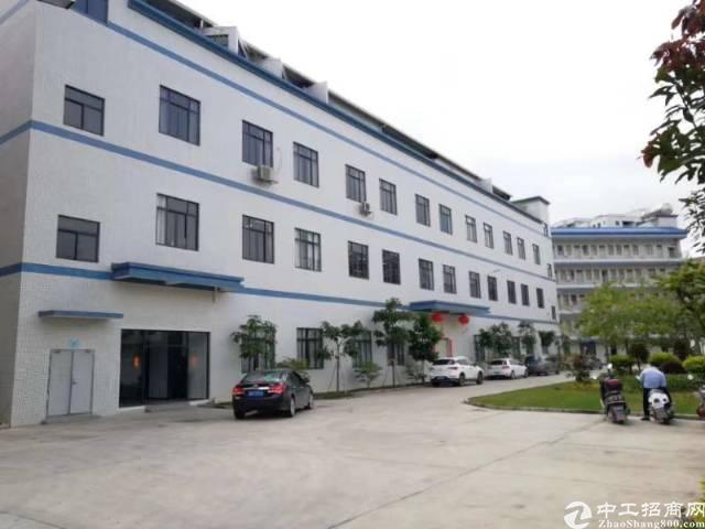坪地新出标准厂房一楼700平厂房层高4.3米
