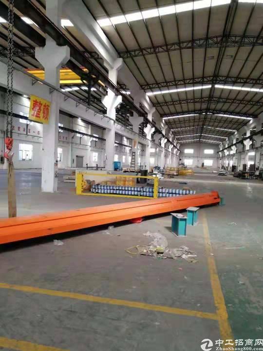 惠城区江北新空出独院钢构厂房3128平米空地1500平