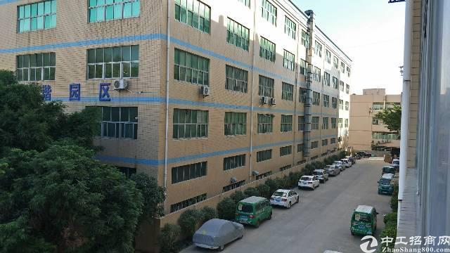 西乡九围原房东1700平方米厂房招租