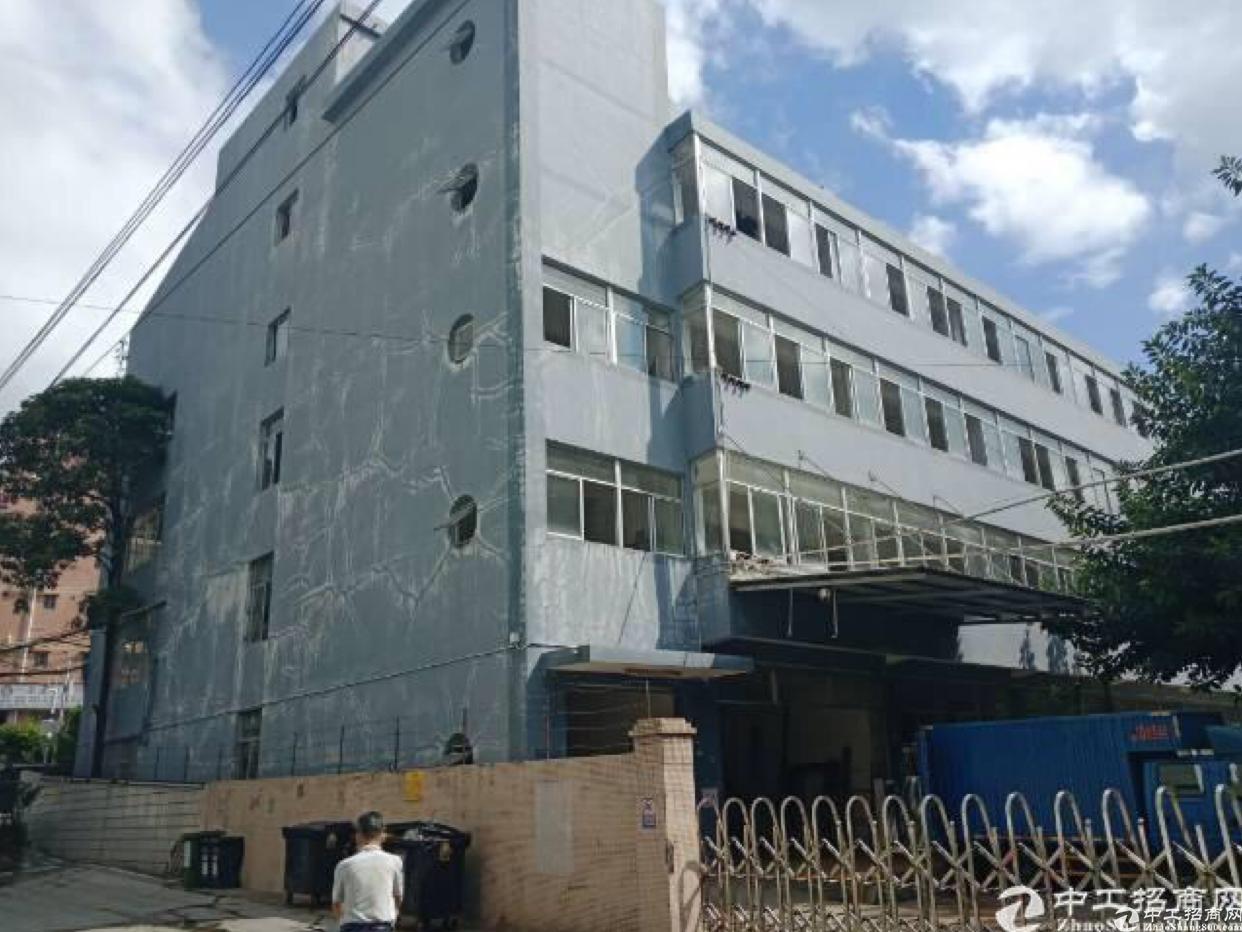 布吉丹竹头地铁旁400平可与服装办公电器厂房出租