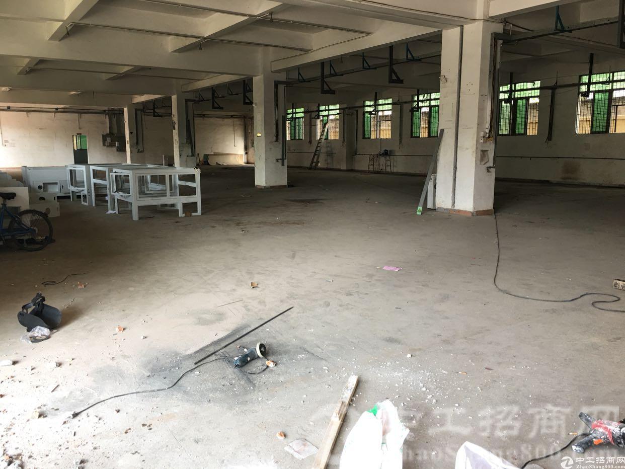 龙华大浪河背工业区一楼800平厂房,层高6米