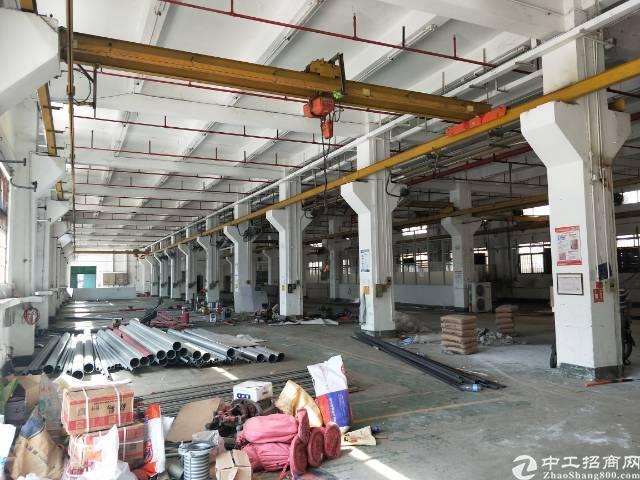 红本厂房一楼带牛角1800平米