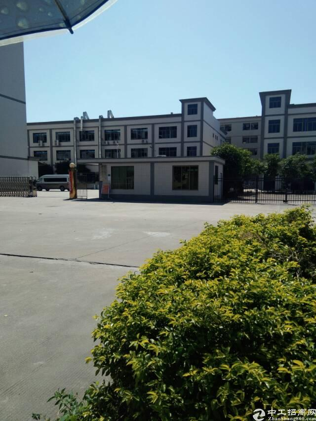 标准厂房 面积3800  租金13元/平方