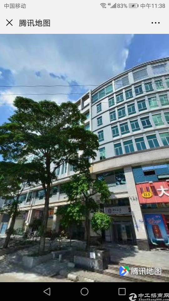 石碣占地面积450平建筑面积2500平永久性宅基地民房出售