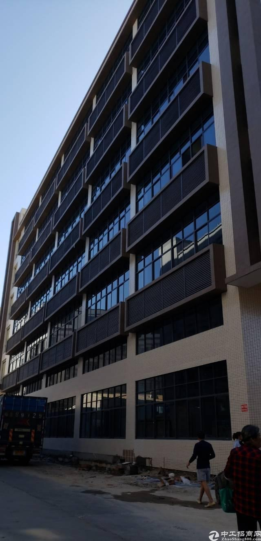 企石镇全新原房东标准厂房带环评消防