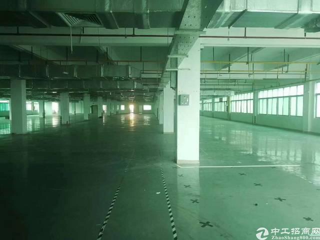陈江镇带地坪漆厂房招租