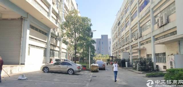 光明李松朗新出楼上带带精装修厂房1480平-图5