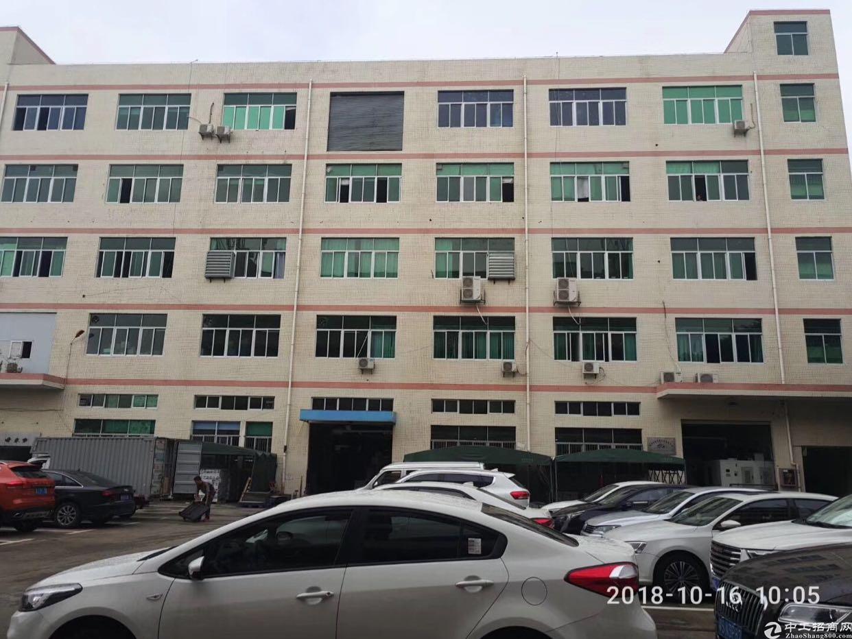 松岗广田路边上新出独栋原房东厂房
