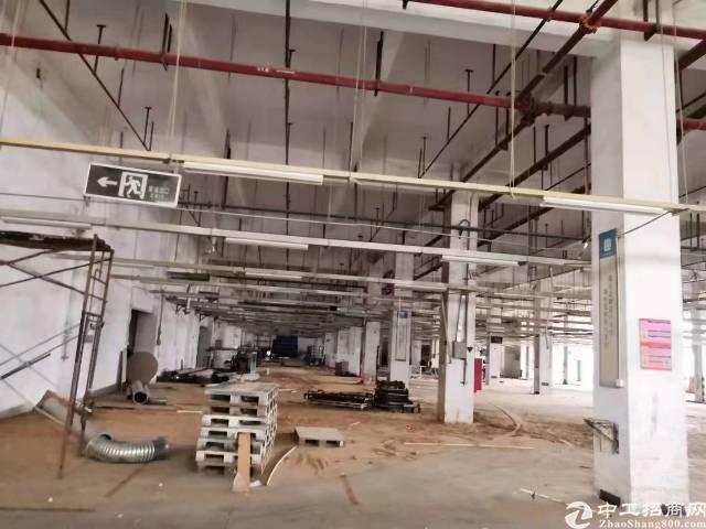 广州大工业园区内新空出一楼厂房1500平招租