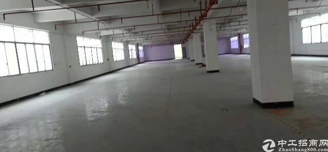 大岭山107国道边原房东带精装修2楼1000平方厂房出租